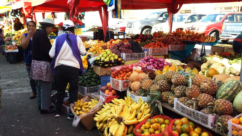 Mercado 27 de Febrero Organic Market Cuenca Ecuador
