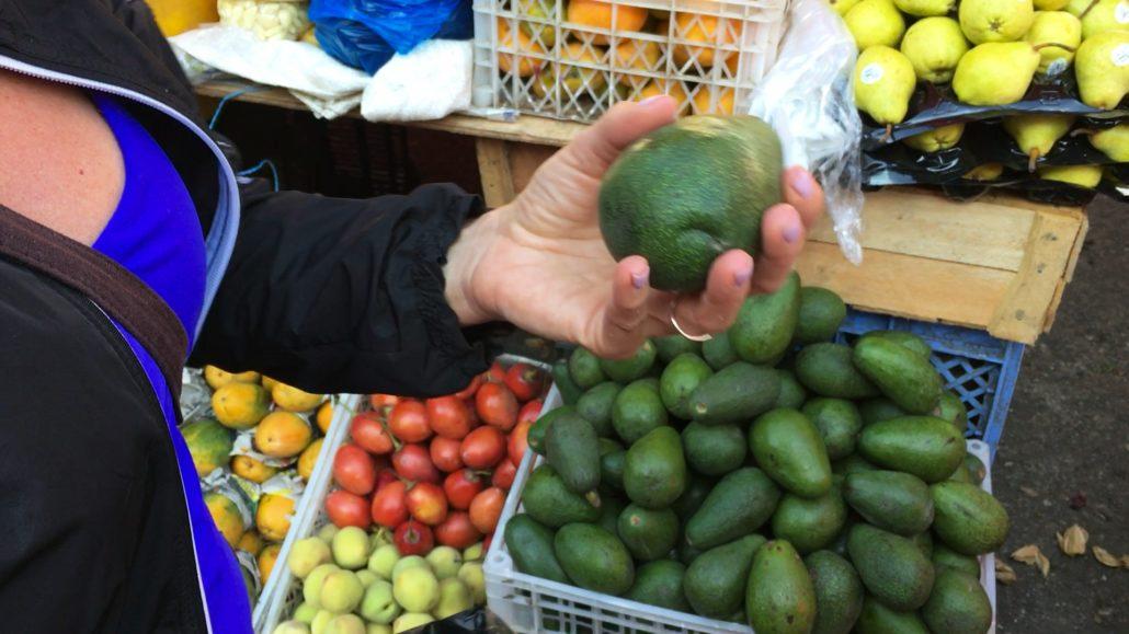 Avocados at Mercado 27 de Febrero in Cuenca Ecuador