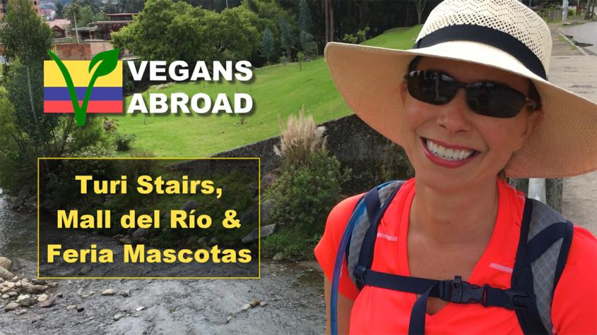Turi Stairs Mall del Rio Feria Mascotas