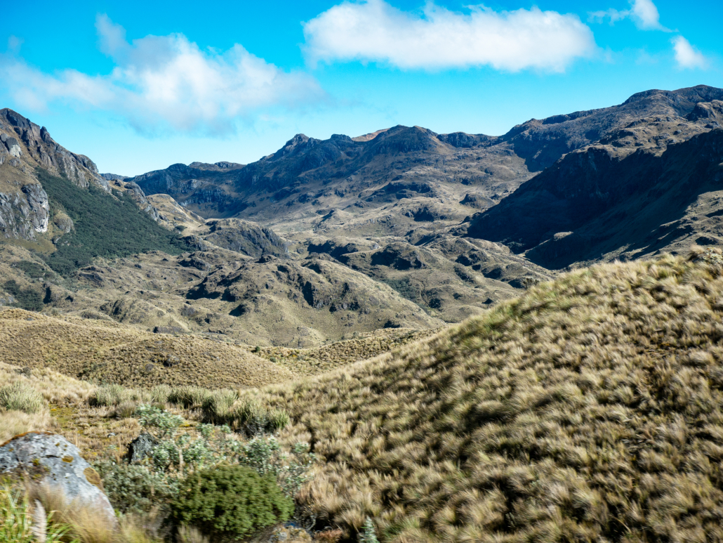 5 Cuenca to La Entrada Cajas