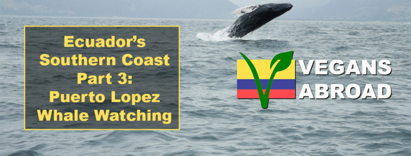 Puerto Lopez Whale Watching Thumbnail