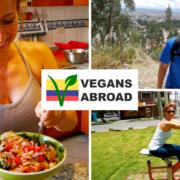 Best Cardio in Cuenca + Easy Garden Salad Recipe