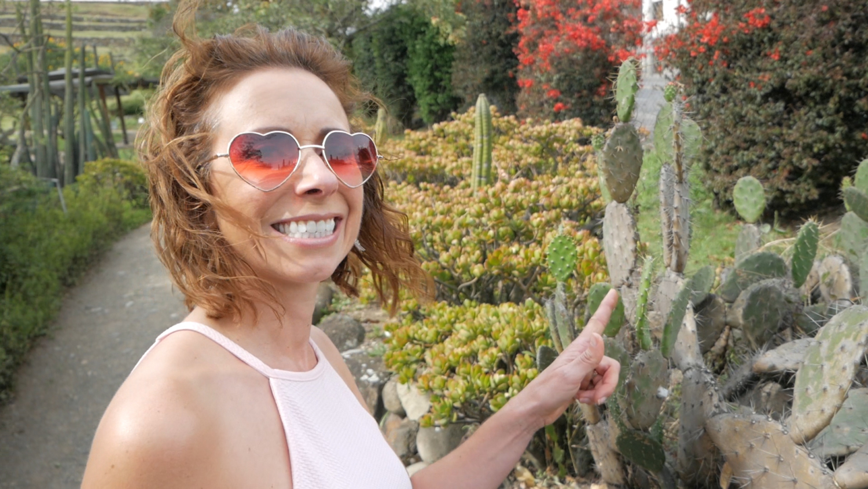 Pumapungo Inca Ruins Cuenca Ecuador Amelia Cactus