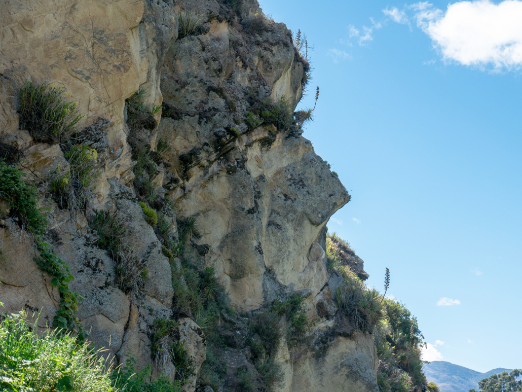 La Cara del Inca - Ingapirca Inca Ruins Ecuador