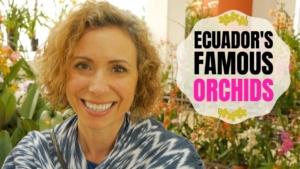 Ecuagenera Orchid Farm Gualaceo Ecuador