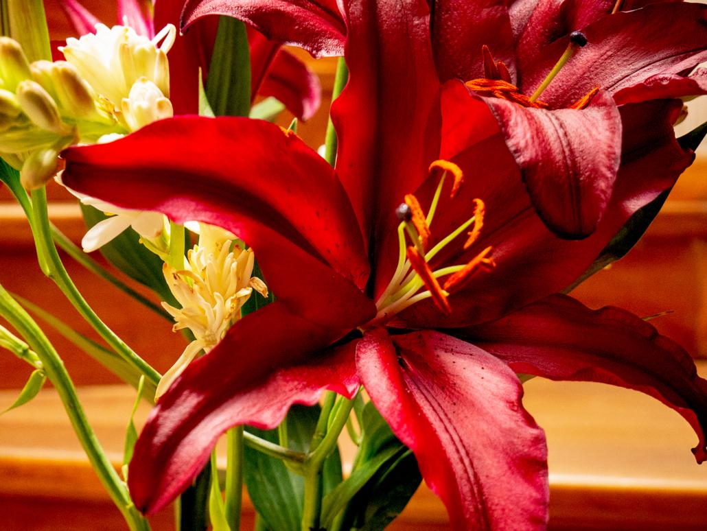 Valentine's Day Cuenca Ecuador 2019 Cuenca Flower Market Lilies