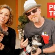 Bringing Pets to Ecuador