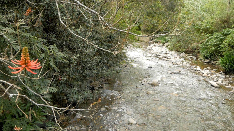Vilcabamba Ecuador Hiking Rumi Wilco River