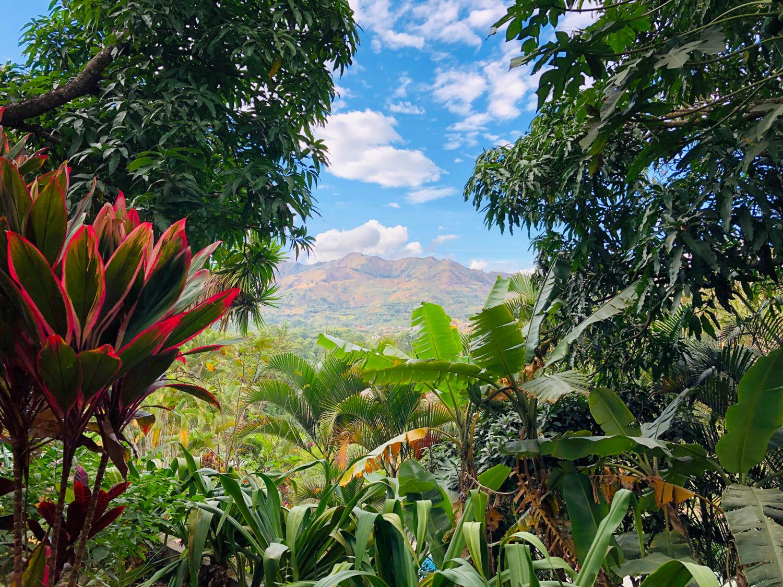 Vilcabamba Ecuador Madre Tierra View 1