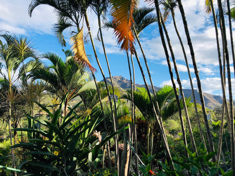 Vilcabamba Ecuador Madre Tierra View 2